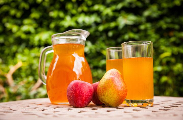 Польза чайного гриба для женского здоровья