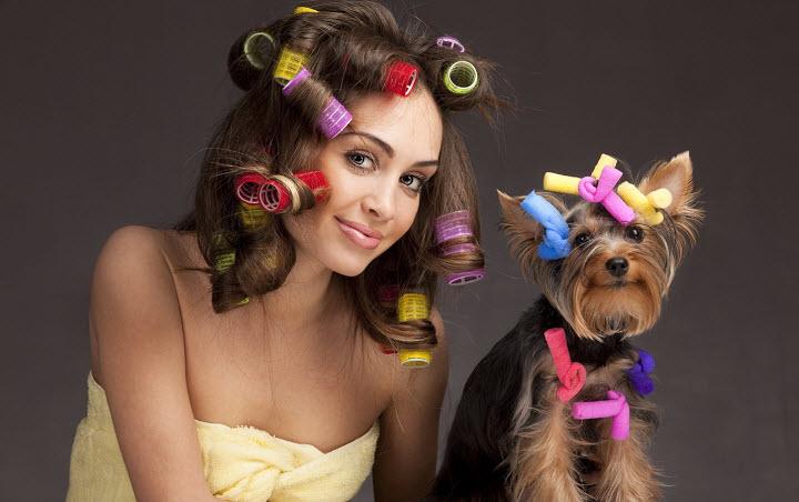 Гламурные собачки - вечная любовь или дань моде?