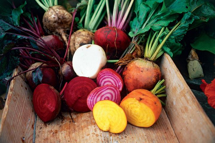 Корнеплоды: ценность и использование в кулинарии