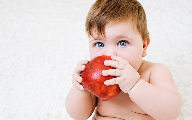 малыш грызет яблочко
