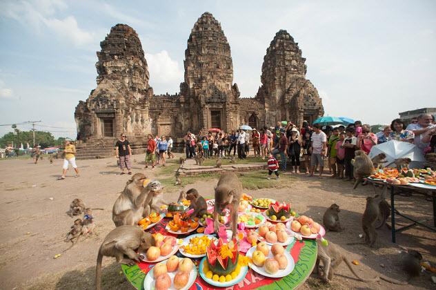 обезьяний фестиваль в Тайланде